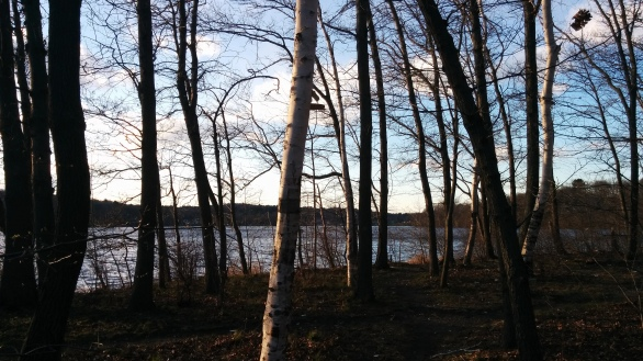 Lower Mystic Lake in the Afternoon 5