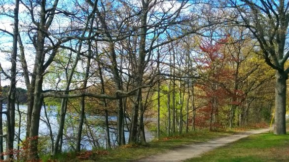 Mystic River Path in Mid-Spring B