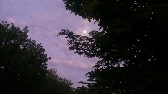 Dragon's Moon Eye