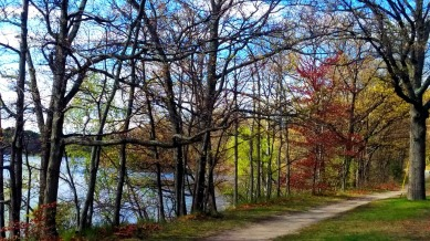 Mystic River Path in Mid-Spring 1