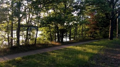 Mystic River Path in Late Spring 2