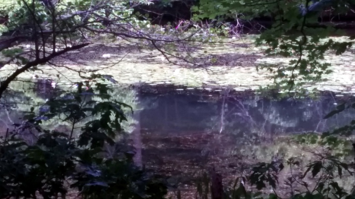 Mystic River: A Cloudy Impression
