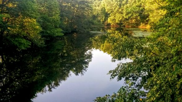 Mystic River after Its First Bend 1