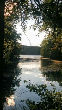 Portrait of a River (Summer) 1