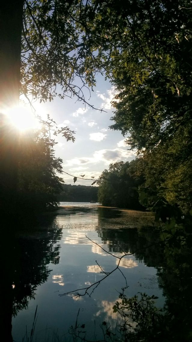 Portrait of a River (Summer) 6