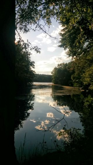 Portrait of a River (Summer) 4