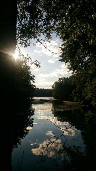 Portrait of a River (Summer) 5