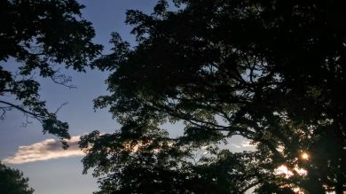 Cemetery Sky 1