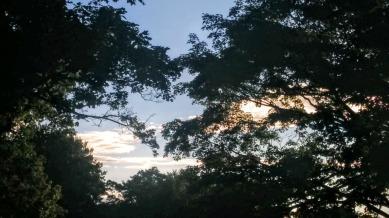 Cemetery Sky 3