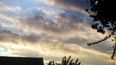 Suburban Twilight, 7:08 PM