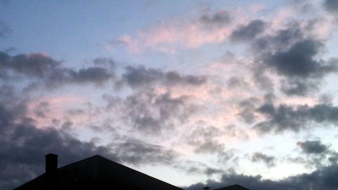 Suburban Twilight, 7:29 PM