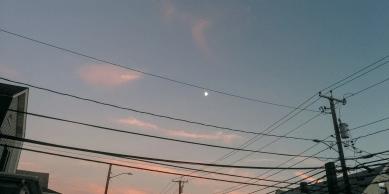 Twilight in Arlington, MA 3