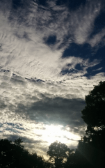 Late Afternoon Clouds 6