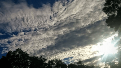 Late Afternoon Clouds 3