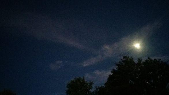 Moonlit 1