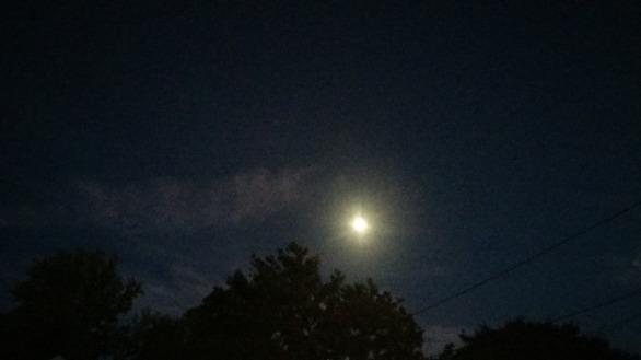 Moonlit 4