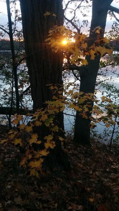 Autumn Sunset 1