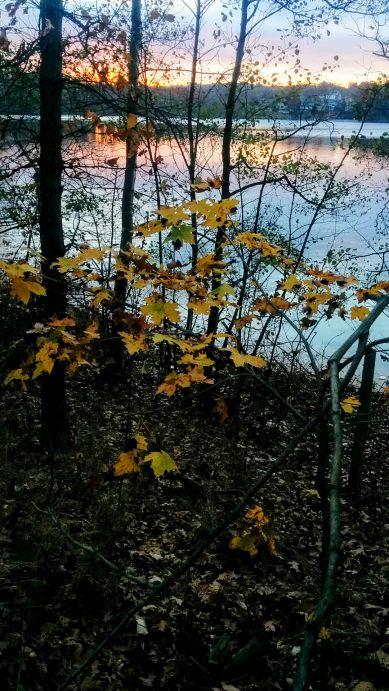Autumn Sunset 2