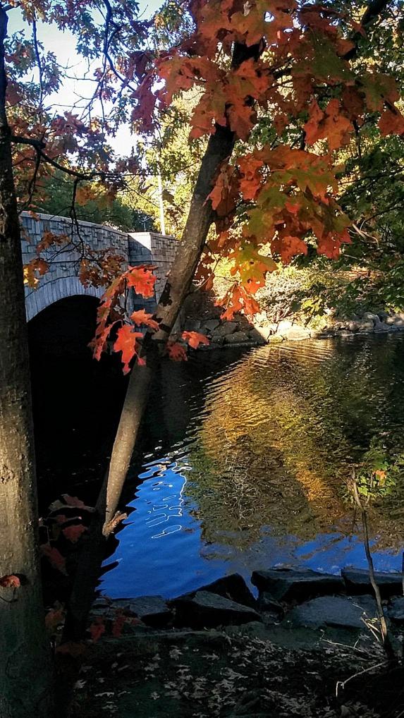 Bridge over Calm Waters 4
