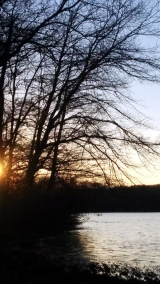 Another Sunset by the Lake 3