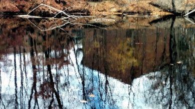 Fall Reflects in Mystic River 1b