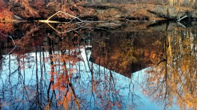 Fall Reflects in Mystic River 1a