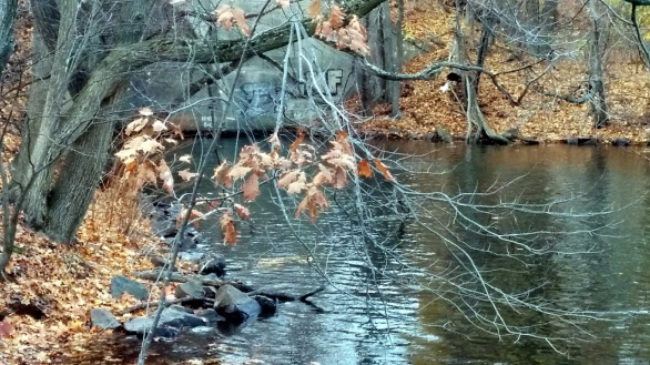 Fall Reflects in Mystic River 3