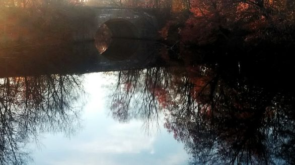 Fall Reflects in Mystic River 6
