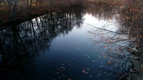Fall Reflects in Mystic River 8