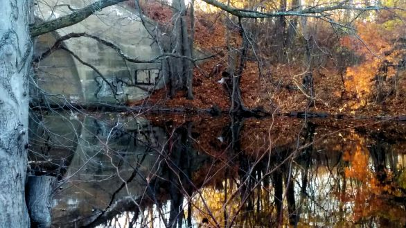 Fall Reflects in Mystic River 4 (Painted)