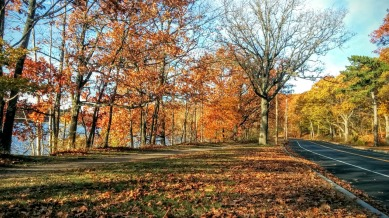 Mystic River Path and Mystic Valley Parkway in Fall 3