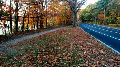 Mystic River Path and Mystic Valley Parkway in Fall 1