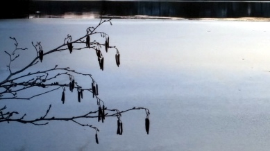 Early Winter Ice on Lower Mystic Lake 11