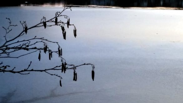 Early Winter Ice on Lower Mystic Lake 4