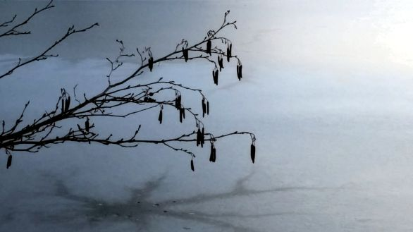 Early Winter Ice on Lower Mystic Lake 6