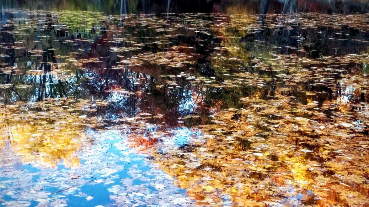 Mirror Art (Fall)