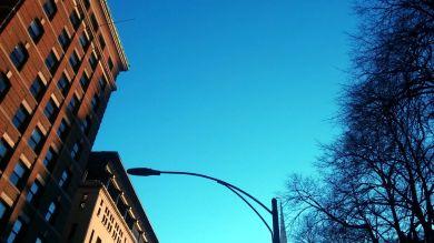 Curious Streetlight 1