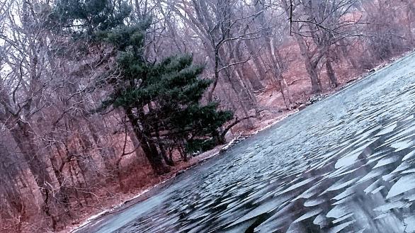 Lake Corner in Winter 2b