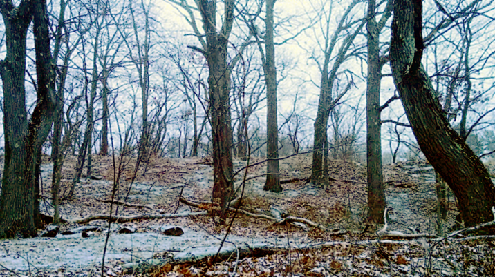 Winter at Mystic River Reservation 3 ((Treatment 1)