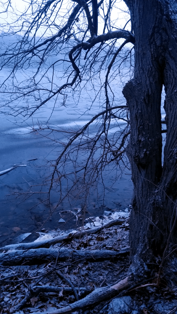 Winter at Mystic River Reservation 4c