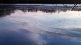Reflection in Icy Lake 5