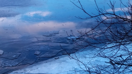 Reflection in Icy Lake 1