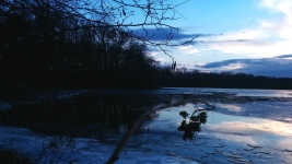Reflection in Icy Lake 7