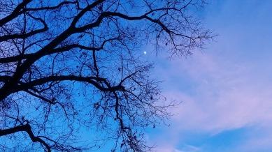 Moon at Dusk 2