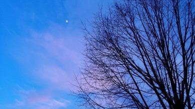 Moon at Dusk 3