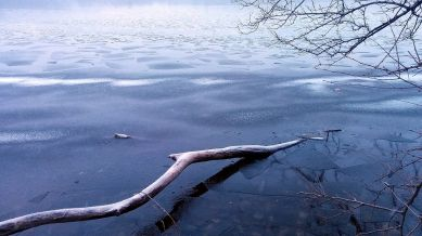 Winter Abstracts by the Lake 4