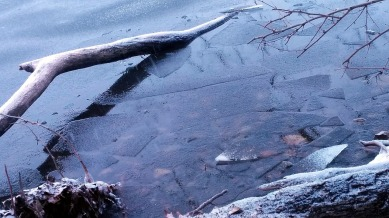 Winter Abstracts by the Lake 5