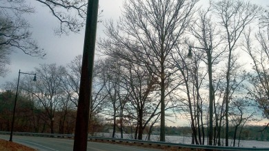 Lampposts by the Lake 1