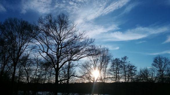 Winter Sky 6
