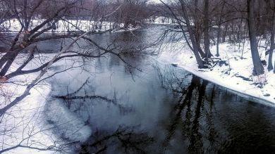 Alewife Brook in Winter 5b